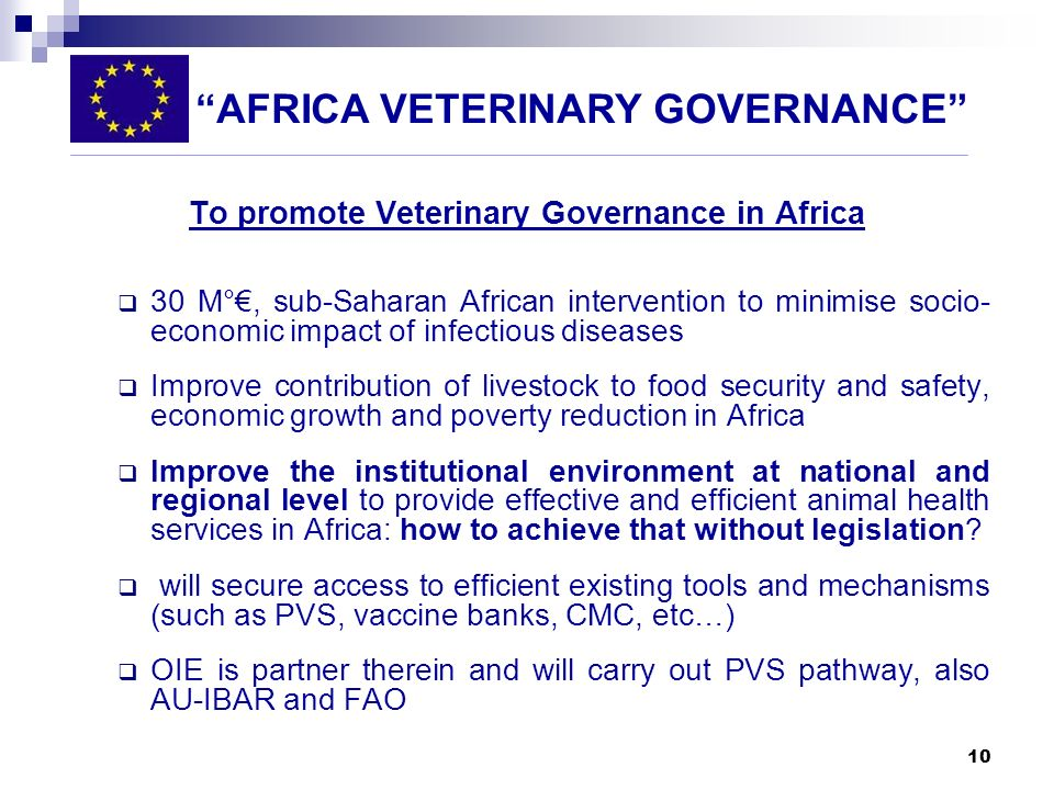 To promote Veterinary Governance in Africa