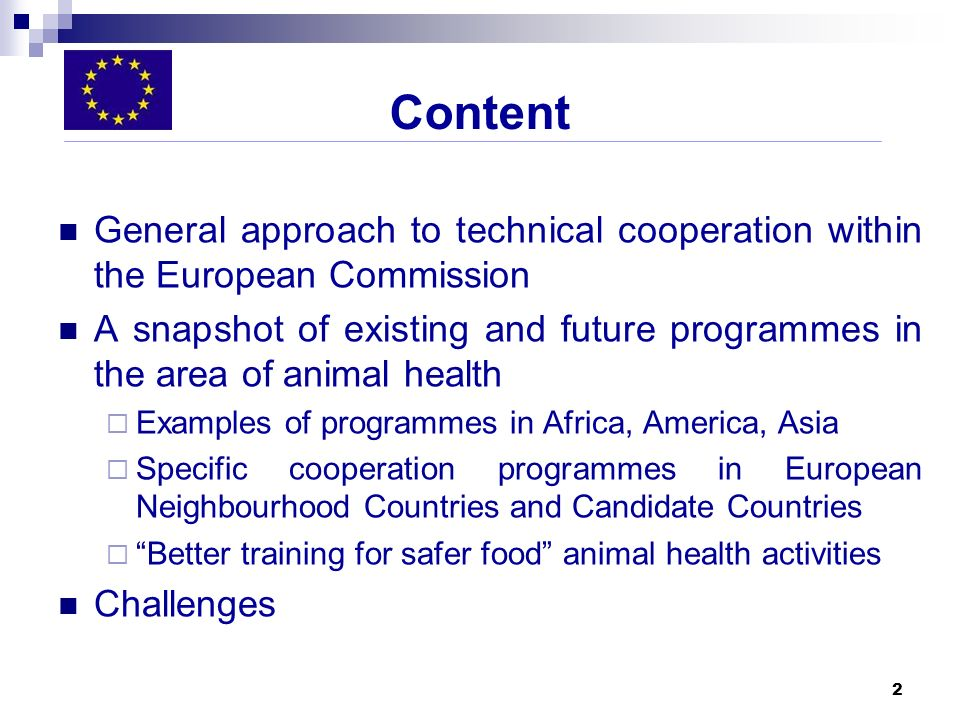 Content General approach to technical cooperation within the European Commission.