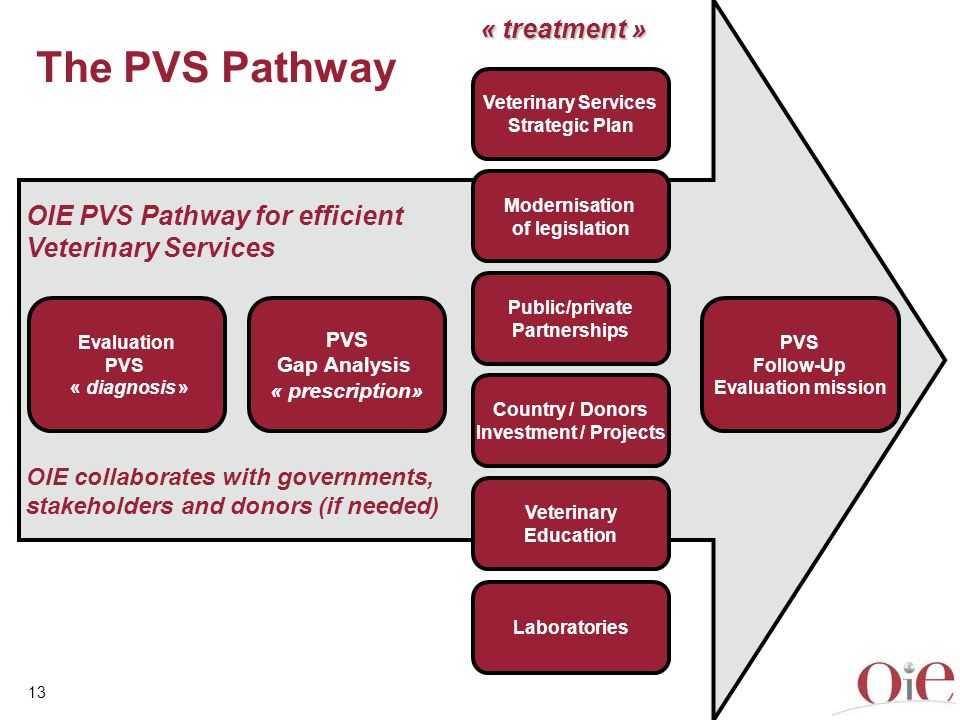 The PVS Pathway « treatment » OIE PVS Pathway for efficient