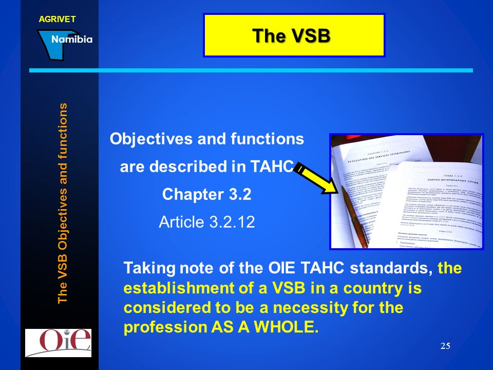 The VSB Objectives and functions
