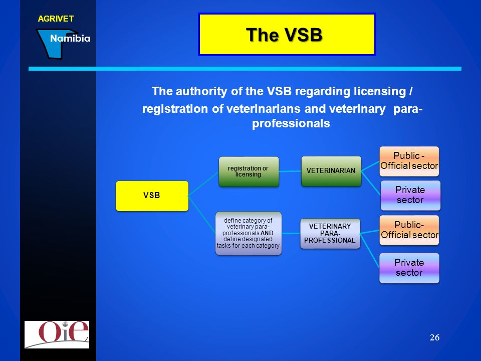 The VSB The authority of the VSB regarding licensing /