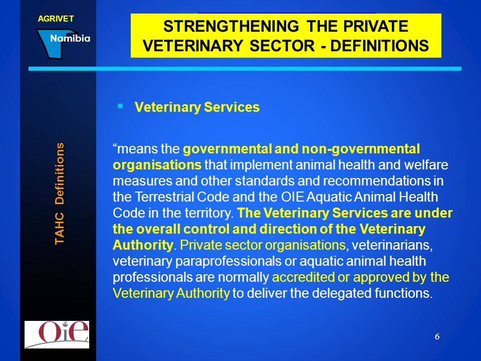 STRENGTHENING THE PRIVATE VETERINARY SECTOR - DEFINITIONS
