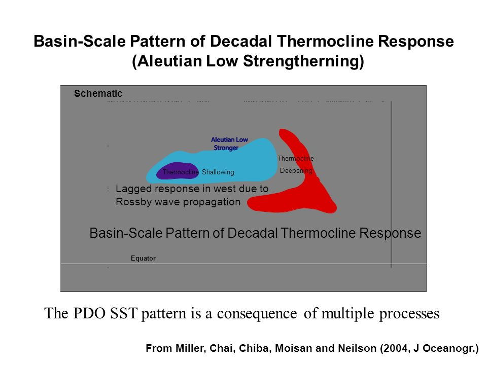 Basin-Scale Pattern of Decadal Thermocline Response