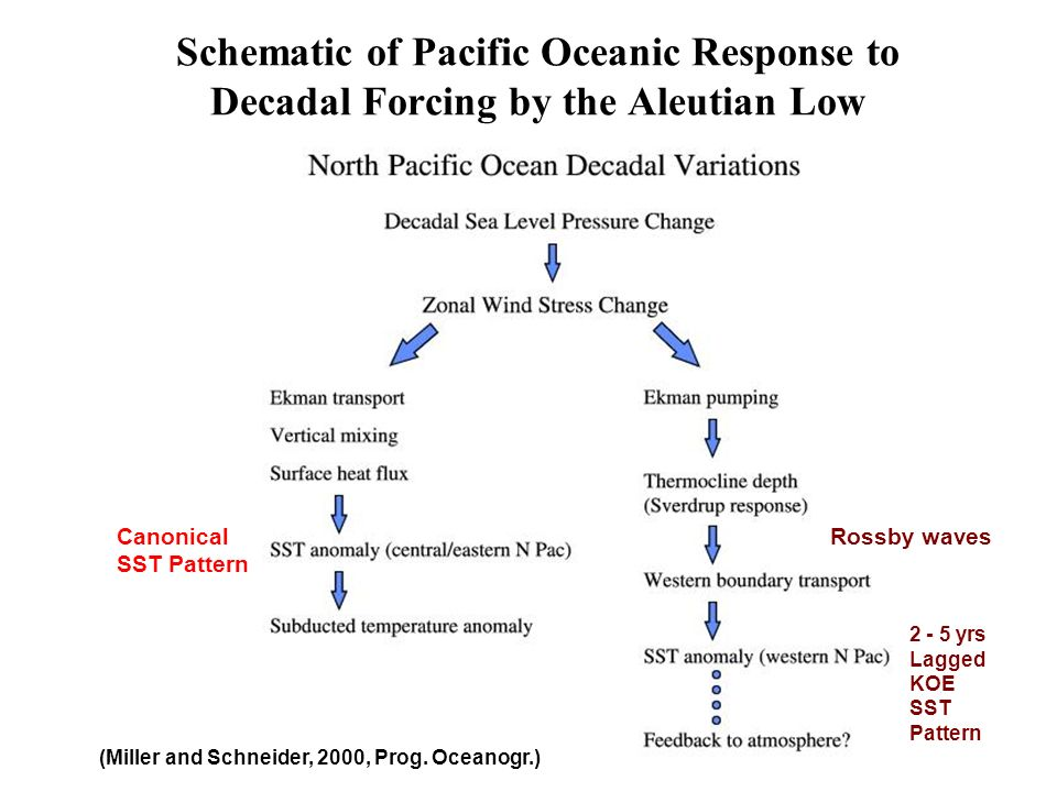 Schematic of Pacific Oceanic Response to Decadal Forcing by the Aleutian Low