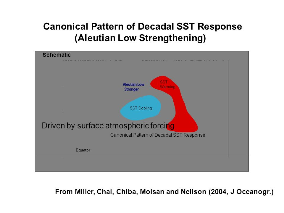 Canonical Pattern of Decadal SST Response (Aleutian Low Strengthening)