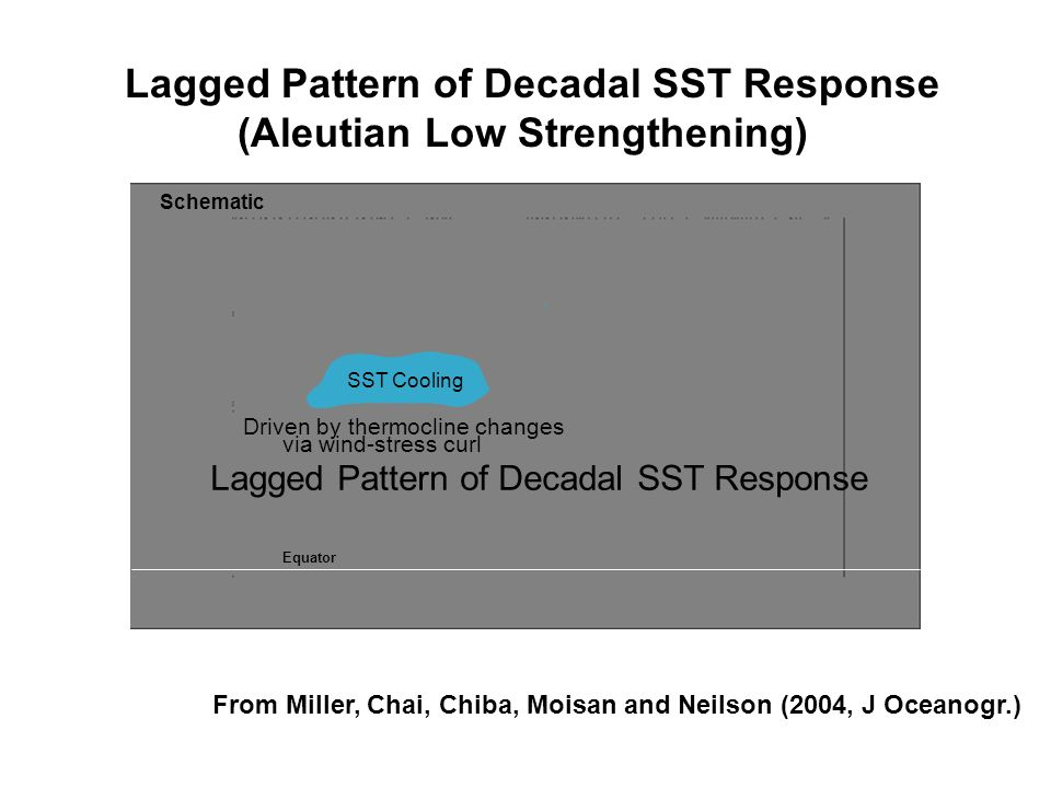 Lagged Pattern of Decadal SST Response (Aleutian Low Strengthening)