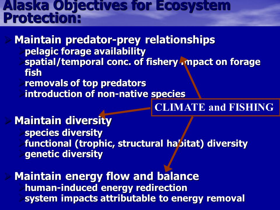 Alaska Objectives for Ecosystem Protection: