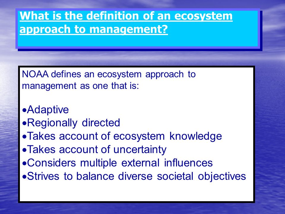 What is the definition of an ecosystem approach to management
