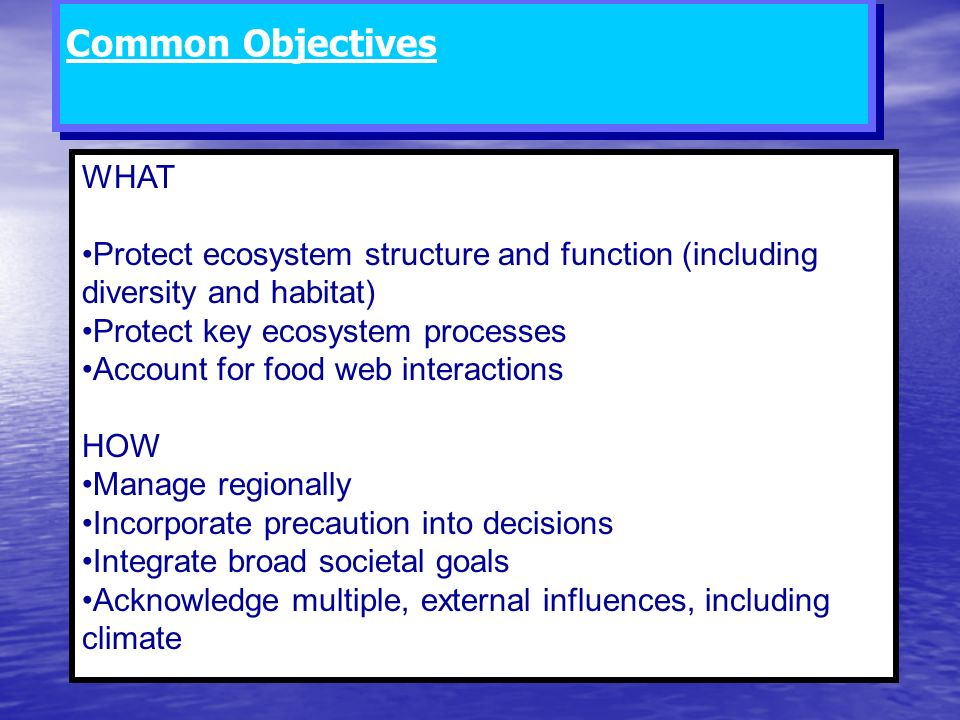 Common Objectives WHAT