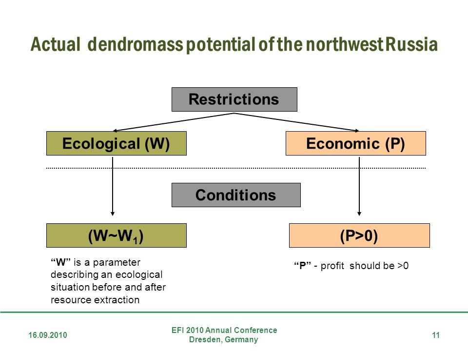 Actual dendromass potential of the northwest Russia