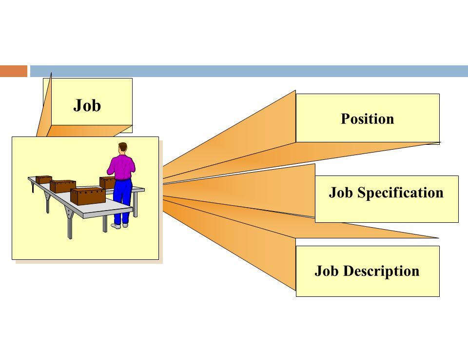 Job Position Job Specification Job Description
