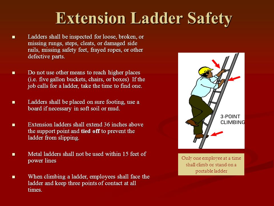 Extension Ladder Safety : Insert company name logo ppt download