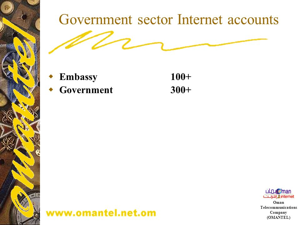 Government sector Internet accounts