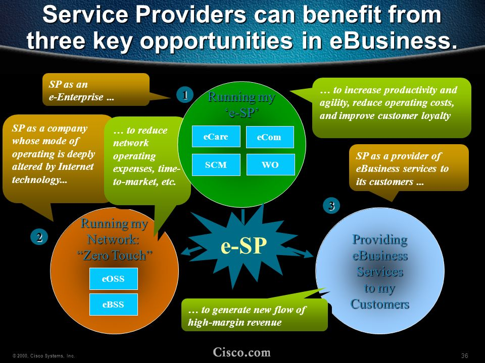 Service Providers can benefit from three key opportunities in eBusiness.