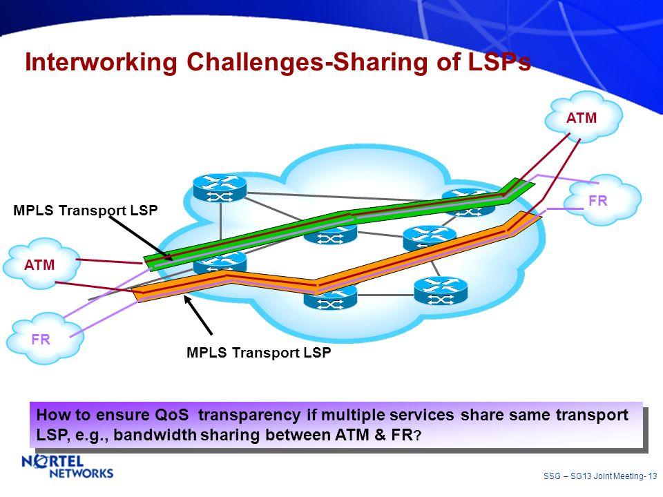 Interworking Challenges-Sharing of LSPs