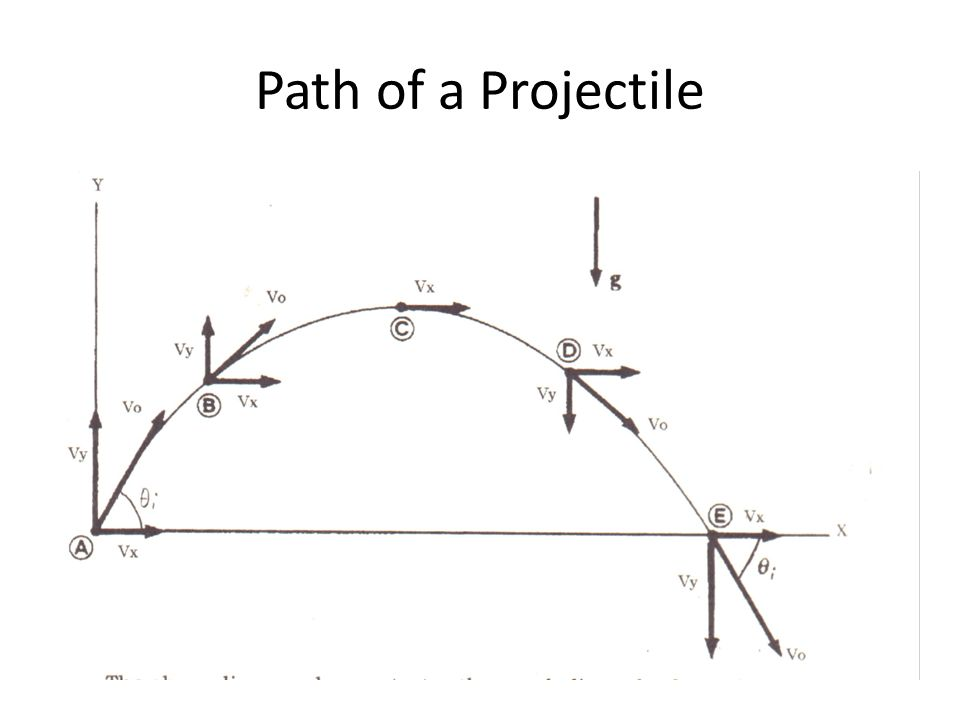 Path of a Projectile