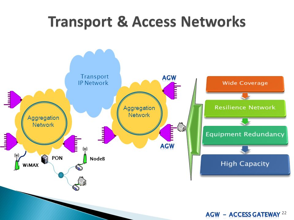 Transport & Access Networks