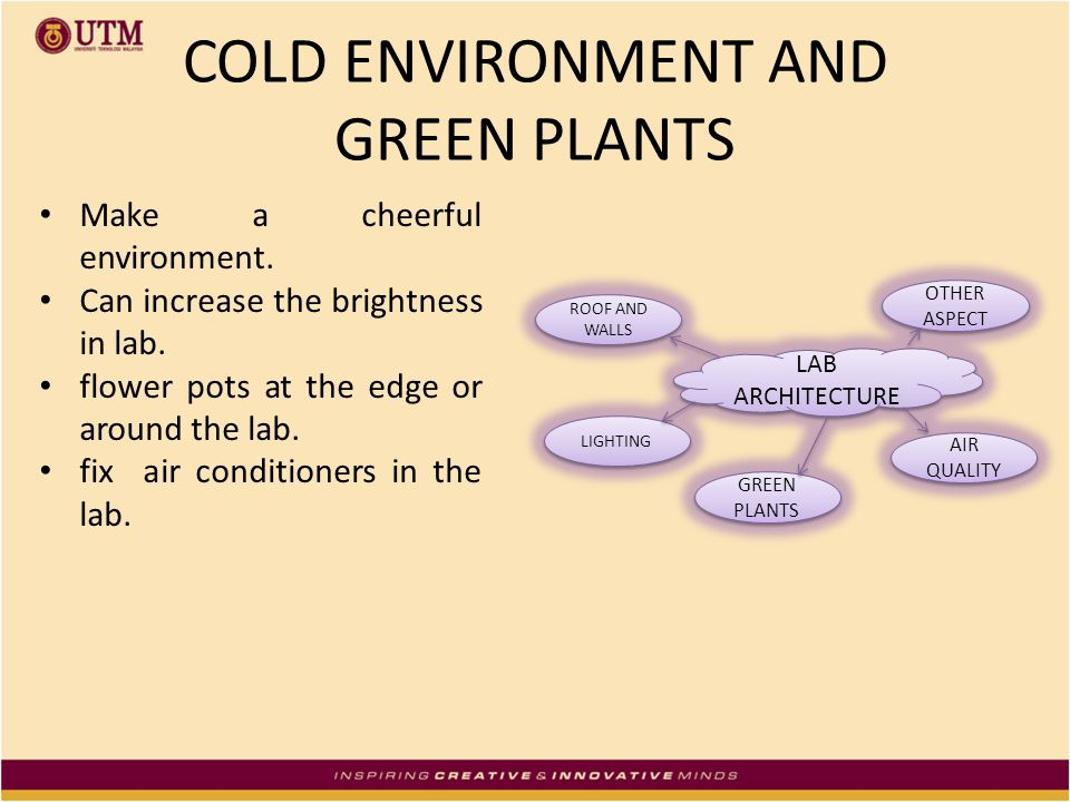 COLD ENVIRONMENT AND GREEN PLANTS