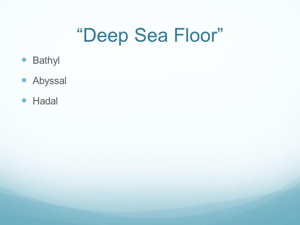 Deep Sea Floor Bathyl Abyssal Hadal