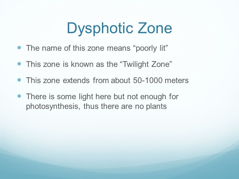 Dysphotic Zone The name of this zone means poorly lit