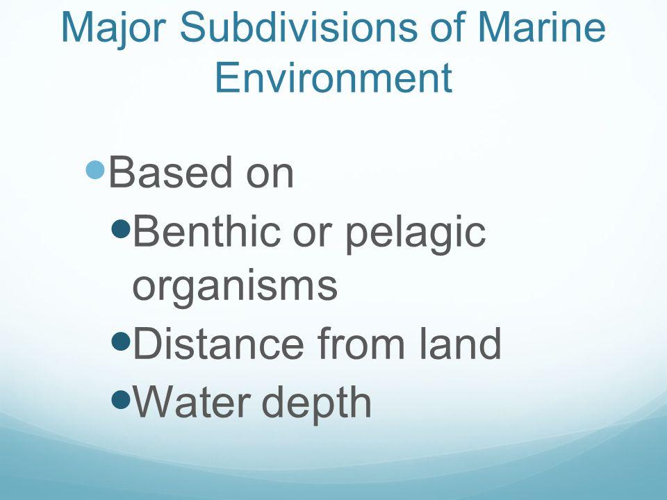 Major Subdivisions of Marine Environment