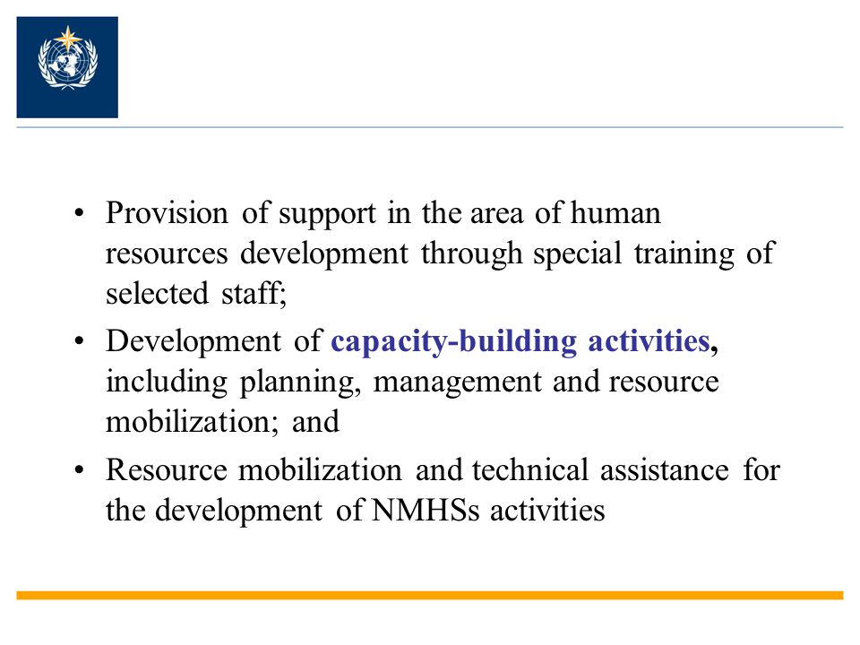 Provision of support in the area of human resources development through special training of selected staff;