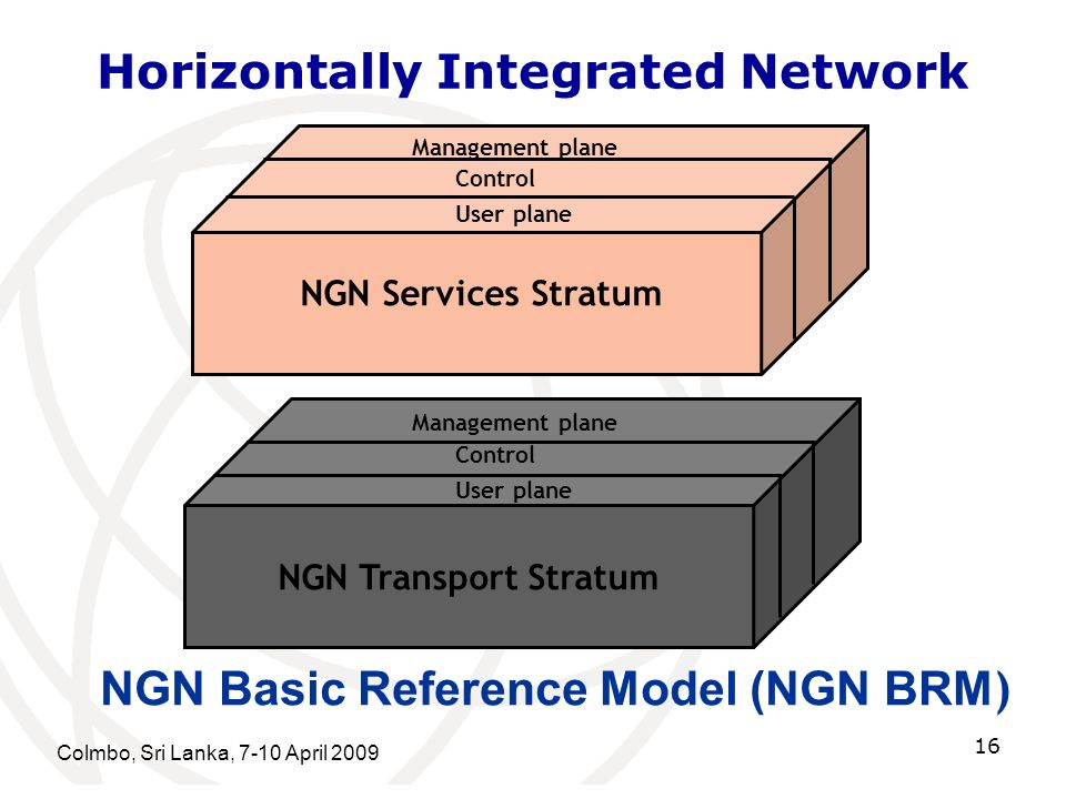 Horizontally Integrated Network