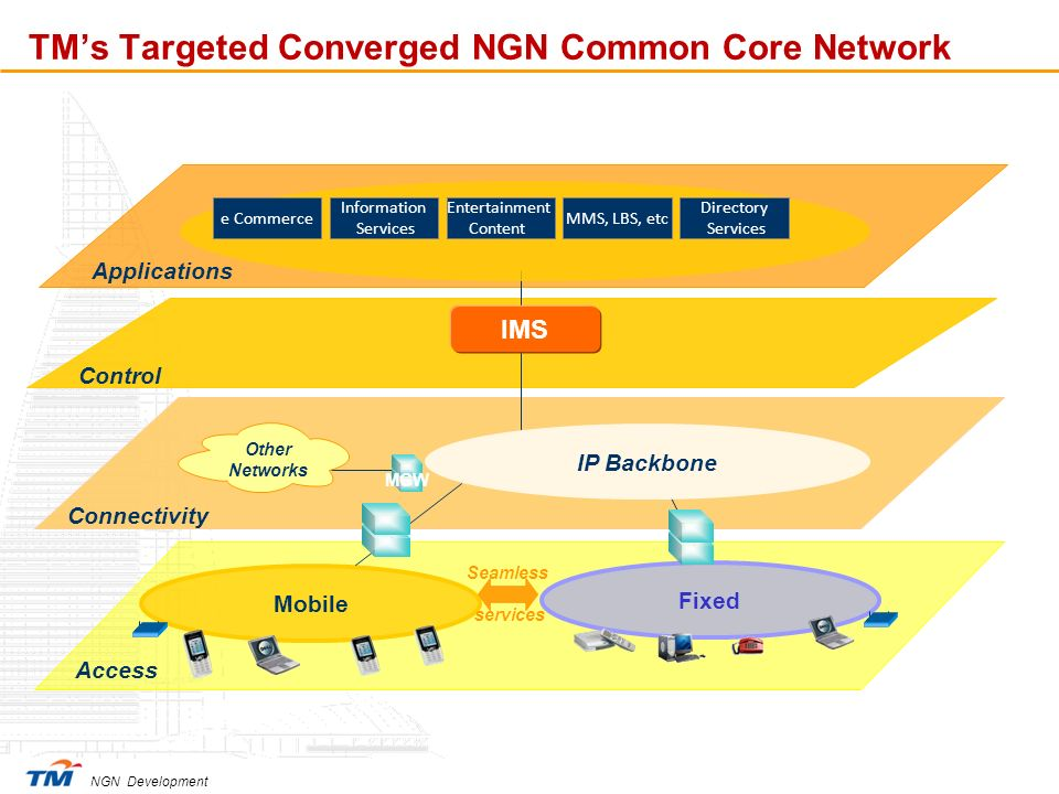 TM's Targeted Converged NGN Common Core Network
