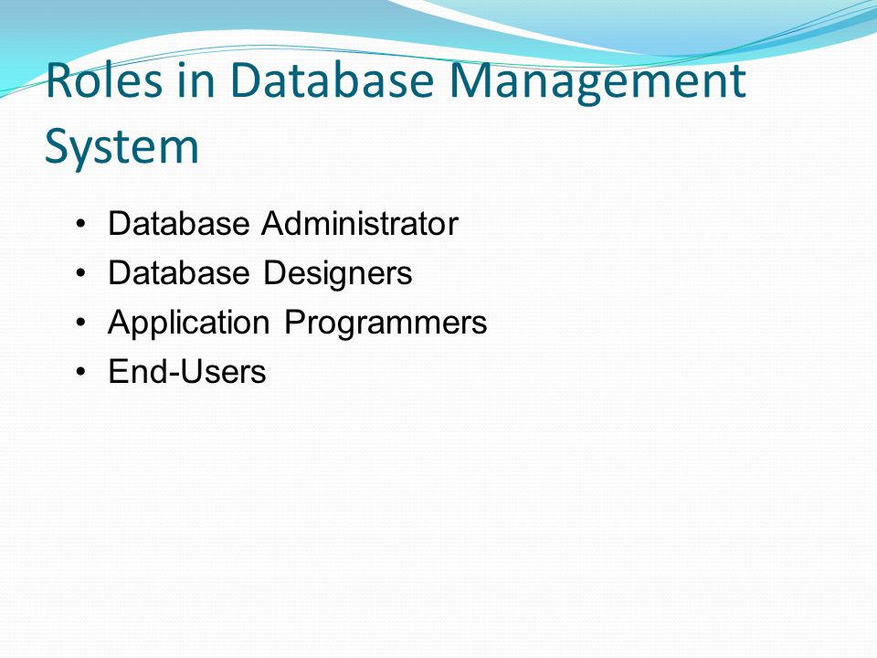 roles in database management system - Role Of Database Designer