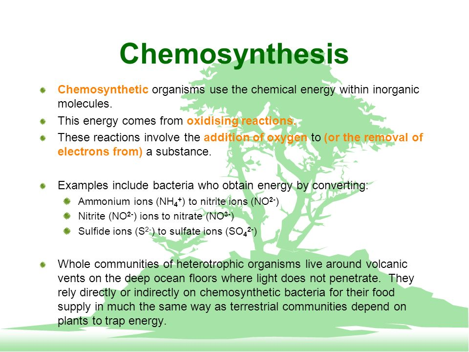 do humans use chemosynthesis Bacteria that contain bacteriochlorophyll do not use water as an electron donor and therefore do not our goal is to educate people about photosynthesis.
