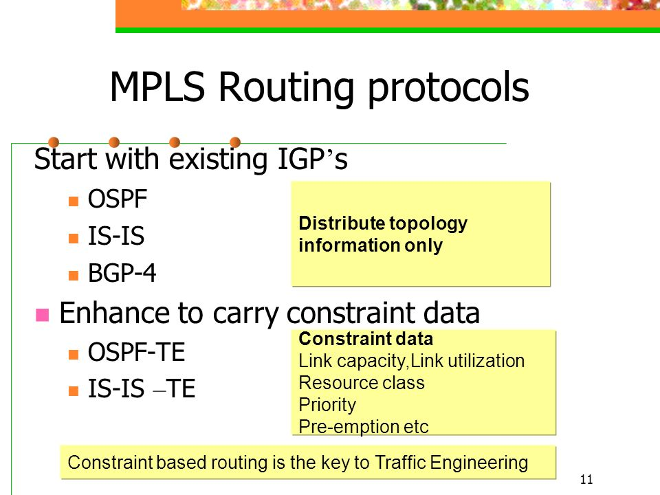 MPLS Routing protocols