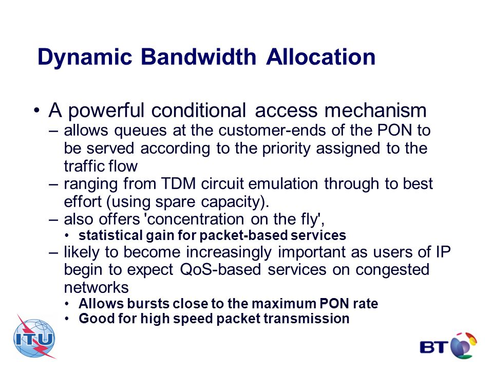 Dynamic Bandwidth Allocation