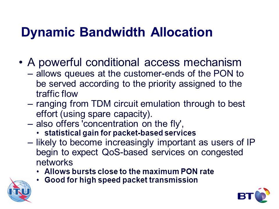 Dynamic Bandwidth Allocation