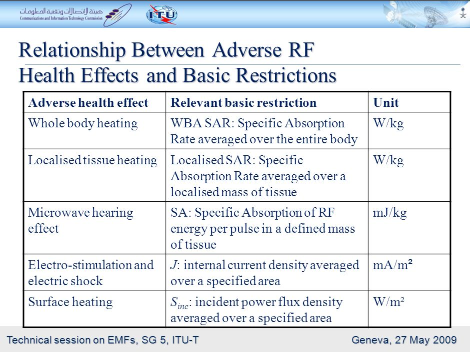 Relationship Between Adverse RF Health Effects and Basic Restrictions