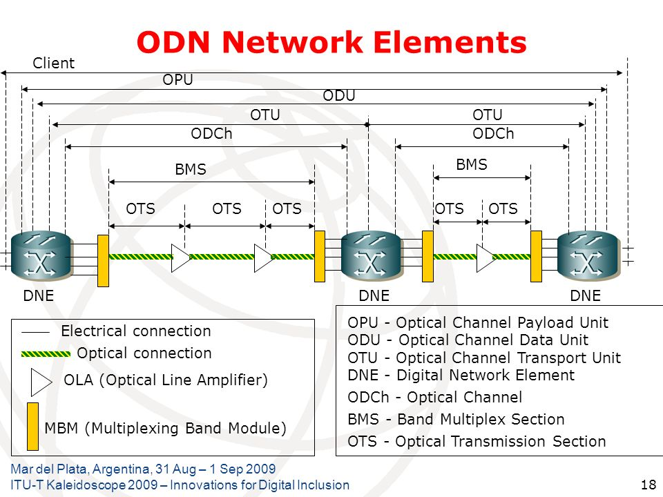 ODN Network Elements Client OPU ODU OTU OTU ODCh ODCh BMS BMS OTS OTS