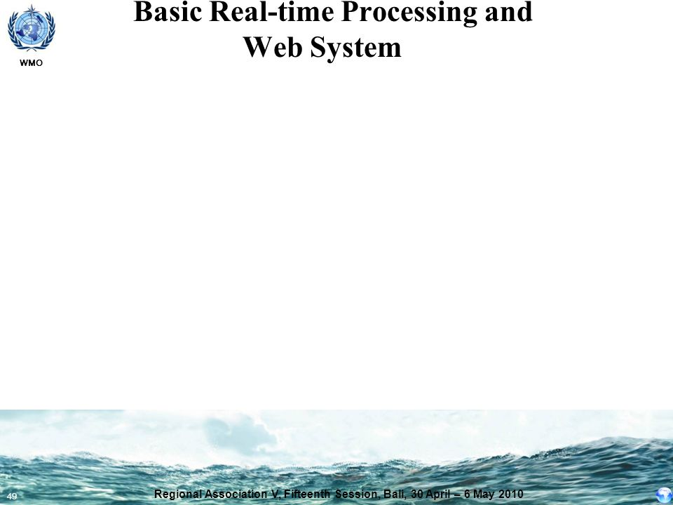 Basic Real-time Processing and Web System