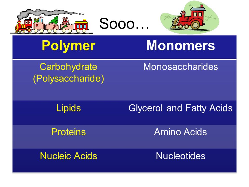 Sooo… Polymer Monomers Carbohydrate (Polysaccharide) Monosaccharides