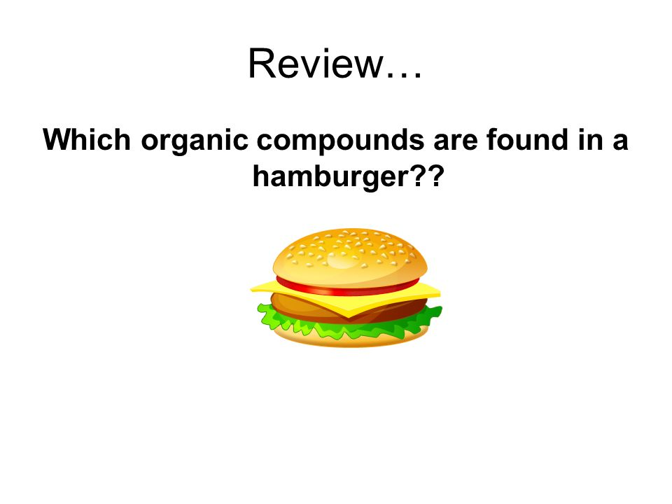 Which organic compounds are found in a hamburger