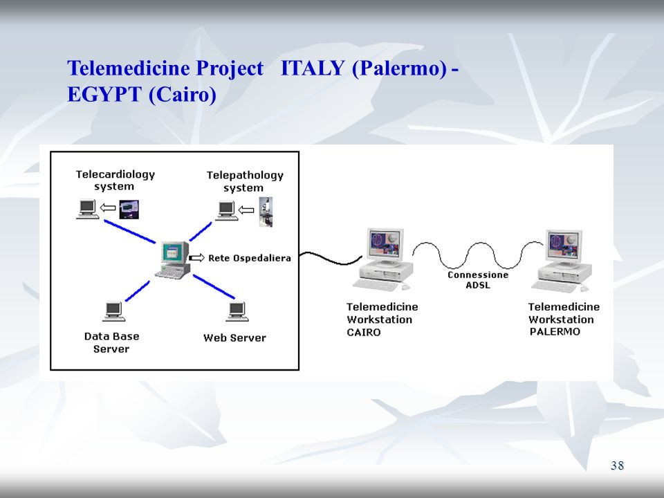 Telemedicine Project ITALY (Palermo) -EGYPT (Cairo)