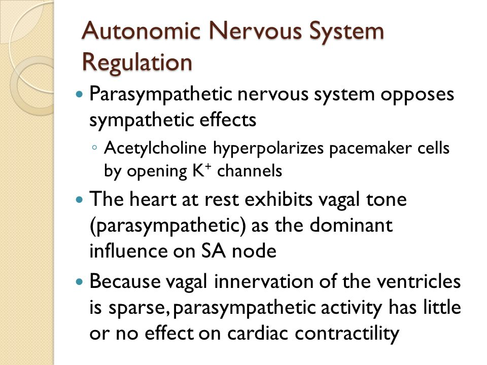 Human Anatomy and Physiology - ppt download