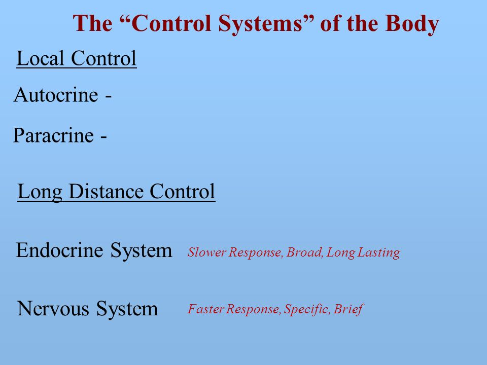 The Control Systems Of The Body Ppt Video Online Download