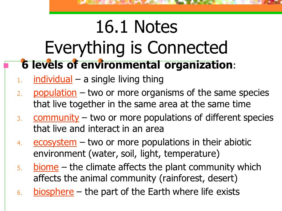 16.1 Notes Everything is Connected
