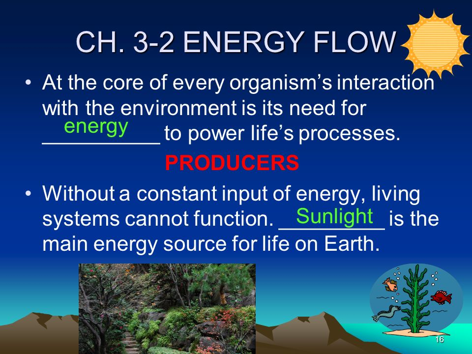 CH. 3-2 ENERGY FLOW At the core of every organism's interaction with the environment is its need for __________ to power life's processes.