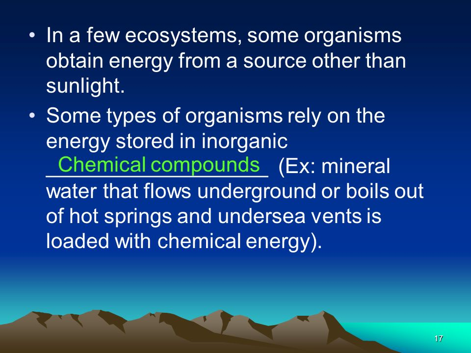 In a few ecosystems, some organisms obtain energy from a source other than sunlight.