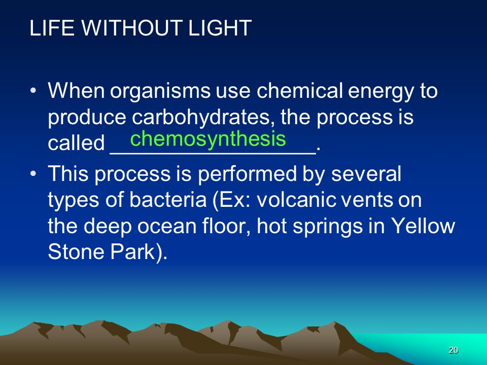 LIFE WITHOUT LIGHT When organisms use chemical energy to produce carbohydrates, the process is called _________________.