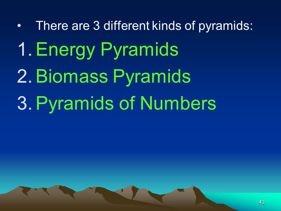 Energy Pyramids Biomass Pyramids Pyramids of Numbers