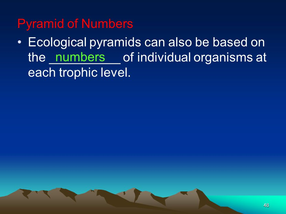 Pyramid of Numbers Ecological pyramids can also be based on the __________ of individual organisms at each trophic level.