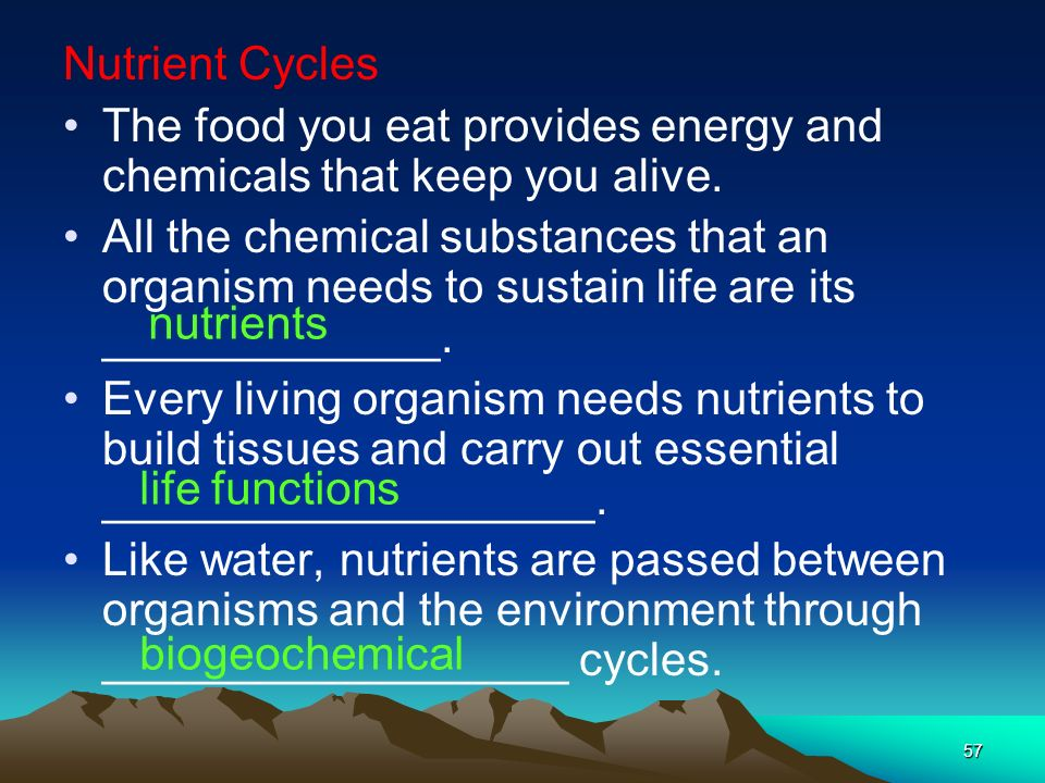 Nutrient Cycles The food you eat provides energy and chemicals that keep you alive.