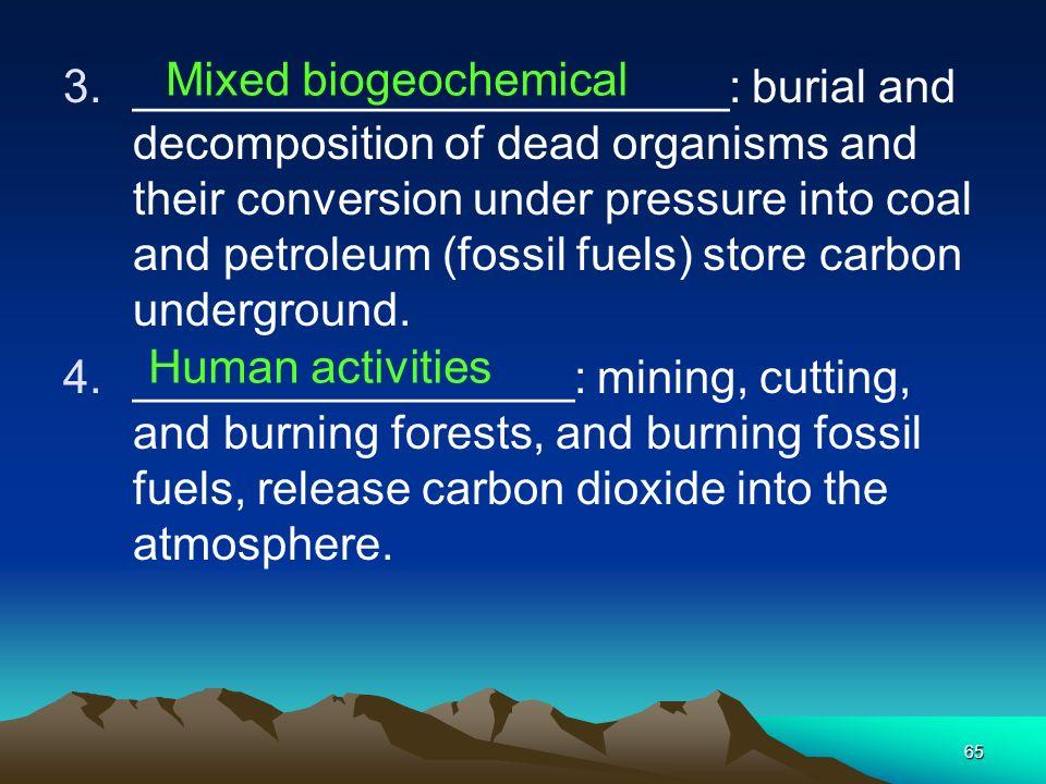 Mixed biogeochemical