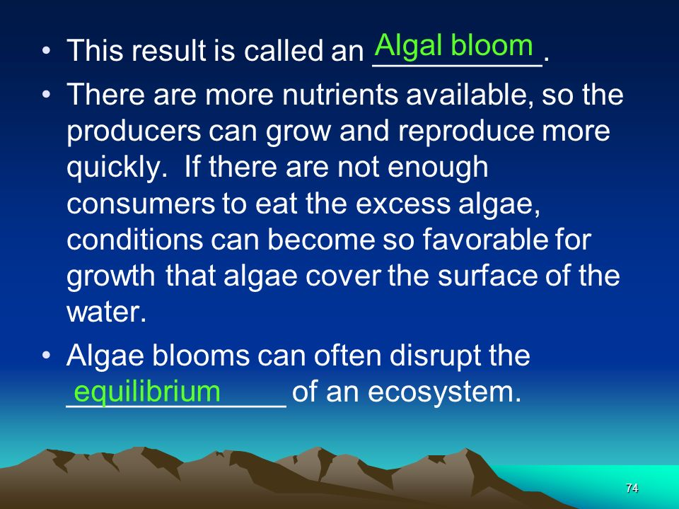 Algal bloom This result is called an __________.